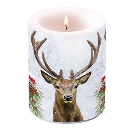 Kaars deer in winter | Rendier | Ambiente
