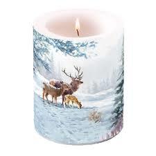 Kaars deer family  | Ambiente