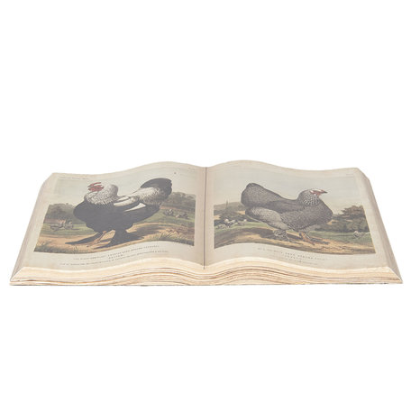 Decoratie boek 48*28 cm Meerkleurig | 6PA0491 | Clayre & Eef