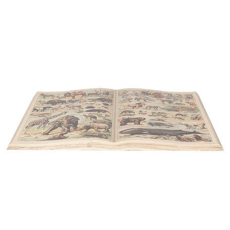 Decoratie boek 65*40 cm Meerkleurig   6PA0495   Clayre & Eef
