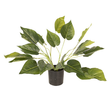 Decoratie kamerplant 46 cm Groen | 5PL0025 | Clayre & Eef