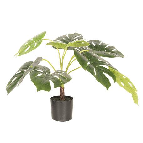Decoratie plant Monstera Deliciosa 68*70*70 cm Groen | 5PL0017 | Clayre & Eef