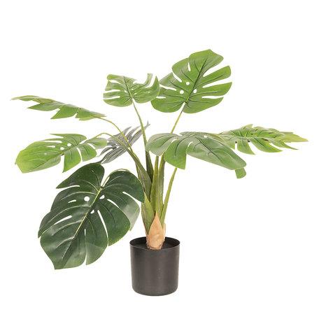Decoratie plant Monstera Deliciosa 68*70*70 cm Groen | 5PL0018 | Clayre & Eef