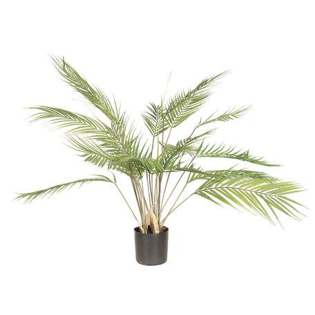 Decoratie plant kwai 68*70*70 cm Groen | 5PL0019 | Clayre & Eef