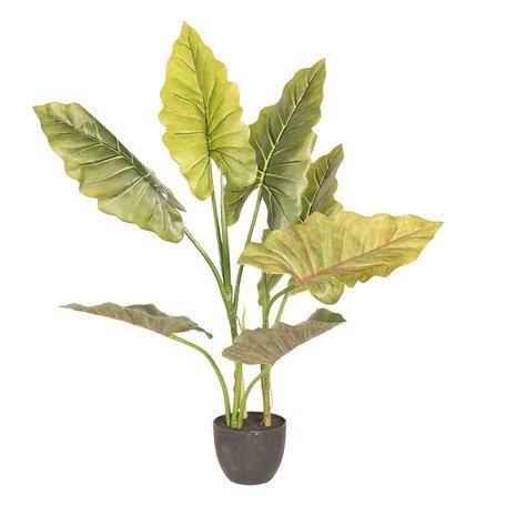 Decoratie kamerplant 60*53*78 cm Groen | 5PL0020 | Clayre & Eef