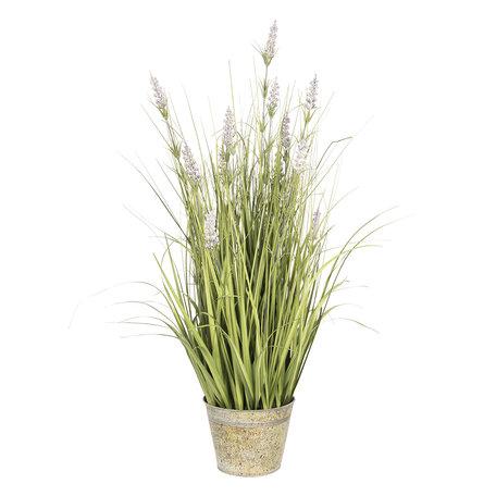 Lavendel 66*64*80 cm Groen | 5PL0022 | Clayre & Eef