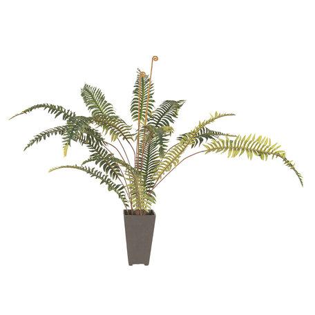 Decoratie kamerplant varen 58*60*86 cm Groen | 5PL0024 | Clayre & Eef