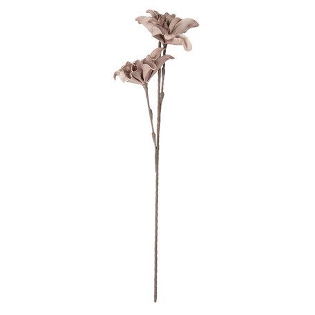 Decoratie tak 77 cm Pink | 5PL0031R | Clayre & Eef