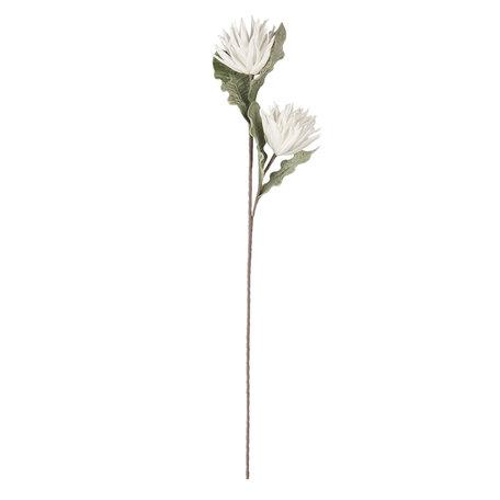 Decoratie tak 92 cm Wit | 5PL0033 | Clayre & Eef