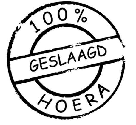 Sticker 100% geslaagd hoera   Rosami   Decoratiesticker