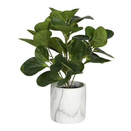 Decoratie kunstplant 31*31*32 cm Groen | 6PL0218 | Clayre & Eef