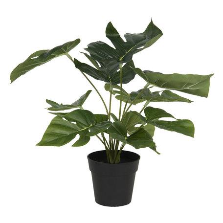 Decoratie kunstplant Monstera Deliciosa 30*30*34 cm Groen | 6PL0215 | Clayre & Eef