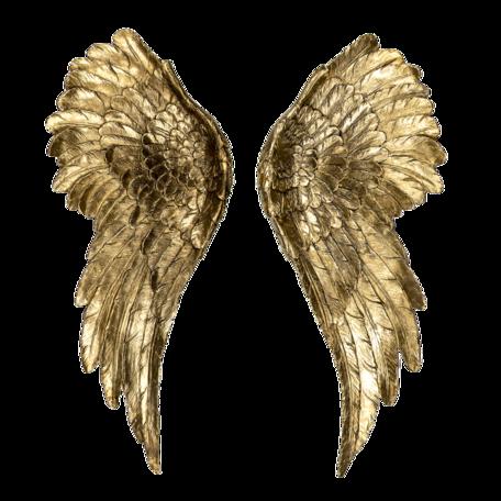 Decoratie vleugels (2) (2) 22*6*55 cm Goudkleurig | 6PR4691 | Clayre & Eef