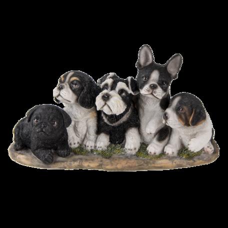 Decoratie honden 33*12*17 cm Multi | 6PR3340 | Clayre & Eef