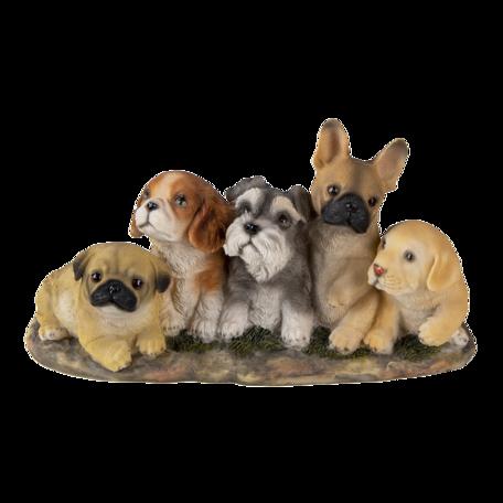 Decoratie honden 33*12*17 cm Multi | 6PR3341 | Clayre & Eef