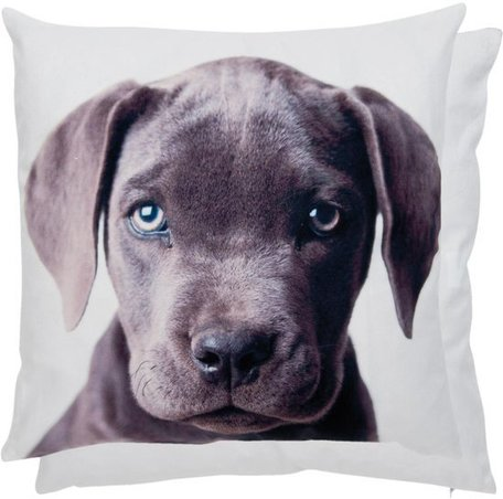 Kussenhoes hond | KT021.067 45 x 45 cm | Clayre & Eef