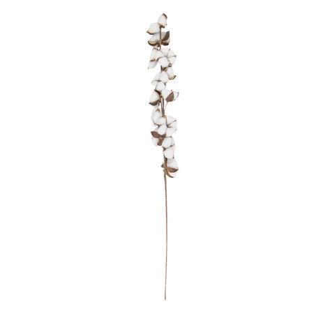 Decoratie katoen bloesem 82 cm Wit | 6PL0190 | Clayre & Eef